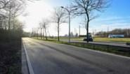Vier jaar lang geen verkeer op Scheldelaan
