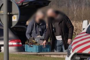 Politie neemt bitcoincomputers in beslag tijdens actie tegen wietplantages