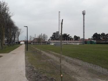 Nieuwe bomen fleuren Burgemeester Graaf Leopold Lippenspark op