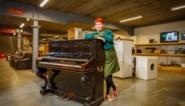 Veerle tikt historisch topstuk op de kop in kringloopwinkel: piano van 18.000 euro voor prijs van een jeans