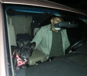 Nieuwe beelden tonen aanval op hondenuitlater Lady Gaga, twee Franse buldogs van popster ontvoerd