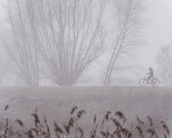 Code geel: KMI waarschuwt voor dichte mist