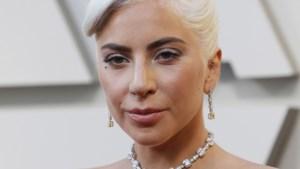 Gestolen honden van Lady Gaga zijn teruggevonden (en ze leven nog)