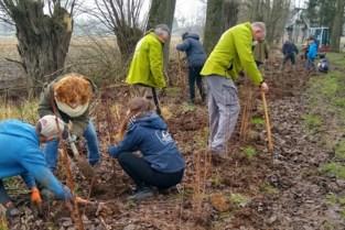 Vrijwilligers zorgen voor meer groen