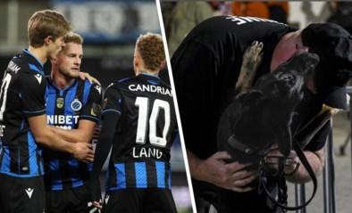 """Is detectiehond het redmiddel tegen corona in het voetbal? """"Wij hadden covid-uitbraak bij Club Brugge kunnen vermijden"""""""