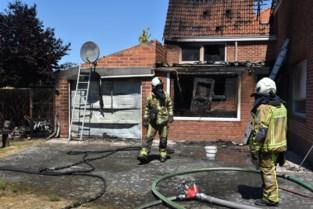 Het brandde vorig jaar 336 keer in de zone Meetjesland, maar brandweer jaagt toch vooral op… wespen