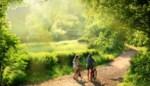 Wandelen of fietsen: wat is het beste als je wil afvallen?