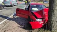 Wagen botst tegen boom in Hechtel, 25-jarige bestuurder raakt gewond
