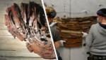 Verborgen parel in 'lelijke toren': werk van Gentse kunstenares gered van de sloop