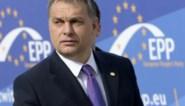 """EVP-fractieleider Weber: """"Fidesz heeft zich van ons afgewend"""""""