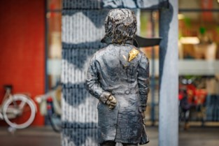Mechelen laat na vandalisme nieuwe stengel gieten voor roos van Beethoven
