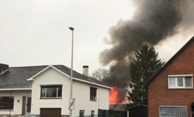 Eén oldtimer in de as gelegd bij brand in Koersel, vier andere beschadigd