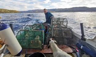 """Marnik woont aan Schotse kust: """"De zee is mijn leven, dan kom je niet ver in Genk"""""""