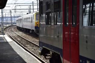 Twee illegalen geboeid van trein gehaald