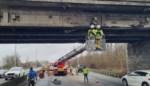 Vrachtwagen rijdt met lading tegen brug: E40 lange tijd versperd