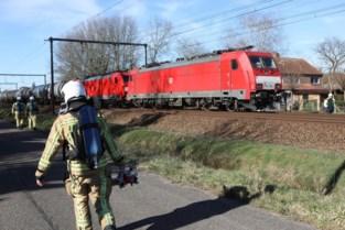 Treinverkeer tussen Lier en Heist ligt stil door vastgelopen goederentrein in Berlaar