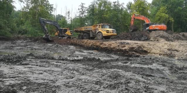 256 oude stortplaatsen worden volgeplant met bomen