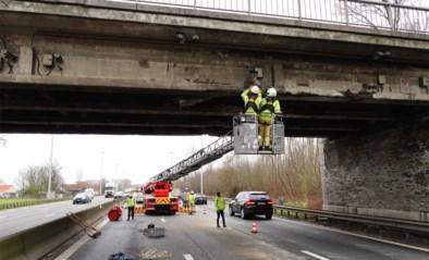 Bijna een uur file op E40: brug Drongen wordt hersteld na aanrijding door vrachtwagen