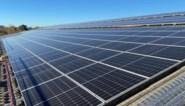 Geen groenestroomcertificaten meer voor middelgrote zonne-projecten