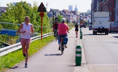 Groendreef krijgt permanente fietsstraat: tijdelijke maatregel wordt definitief