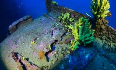 Duiker maakt prachtige beelden van gezonken bommenwerper uit WO II