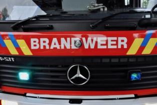 Vijf lichtgewonden bij kleine ontploffing in werkhal