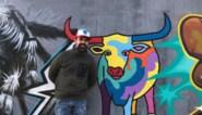 Koerie geeft graffitimuur extra kleur