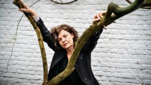 """Hilde Van Mieghem, de spreekbuis van de Vlaamse #MeToo-beweging: """"Ik heb doodsbedreigingen gekregen na de storm over Bart De Pauw"""""""