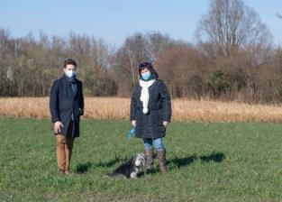 """Groen en Open VLD bekvechten over doortrekking N41: """"Massa open ruimte dreigt verloren te gaan"""""""