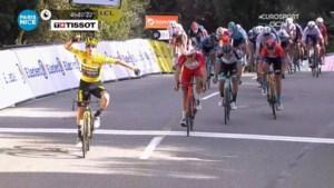 Campenaerts kleurt zesde etappe Parijs-Nice, ritwinst voor indrukwekkende Primoz Roglic