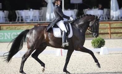 Gevaar voor dodelijk virus nog niet geweken: Europees verbod op paardensport wordt verlengd tot 11 april
