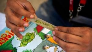 Mexico zet belangrijke stap naar legalisering cannabis
