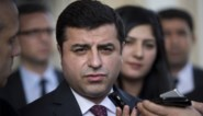 Koerdische politicus Selahattin Demirtas krijgt 3,5 jaar cel