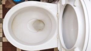 DAG 22. Zo verwijder je kalkaanslag in het toilet
