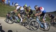 """Nederlandse ex-renner bewierookt de nieuwe generatie in de koers: """"Ze durven te sneuvelen en daarom winnen ze"""""""