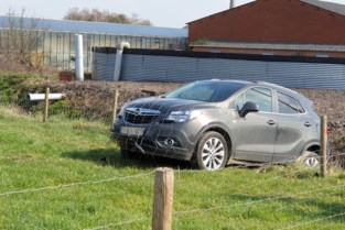 Auto steekt veld en beek over in Rijkevorsel