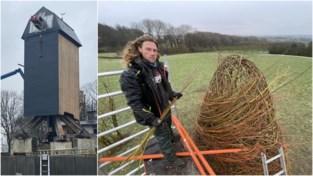 """Nieuwe trekpleisters op heuvels straks mooi in beeld tijdens Gent-Wevelgem: """"Van onschatbare waarde voor toerisme"""""""