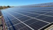 Nieuwe opdoffer voor eigenaars van zonnepanelen met digitale meter: moeten tweemaal betalen voor gebruik van elektriciteitsnet