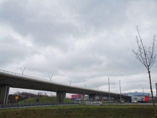 Files aan afrit E19 lopen spuigaten uit: verkeer wordt omgeleid via rotonde Brucargo