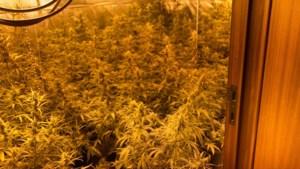 Tien personen opgepakt in heel het land na onderzoek naar drugssmokkel