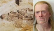 Verbluffend levensecht: 2.000 jaar oude Tongenaar krijgt opnieuw een gezicht