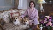 Medewerker 'The crown' ging undercover in Buckingham Palace