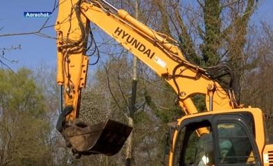 """De Motte in Rillaar krijgt onderhoudsbeurt: """"Wateroverlast in de toekomst zo veel mogelijk voorkomen"""""""