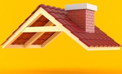 Hoe onderhoud ik mijn dak? Hoe kies ik de juiste dakpannen? En is een groendak de moeite?