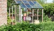 Liever een raam of deur meer en te veel zon is ook niet goed: de beste tips voor het gebruik van een serre