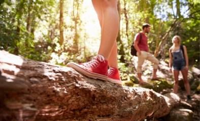 Doe een dobbelsteenwandeling en 4 andere activiteiten voor vandaag