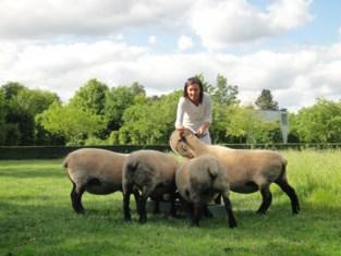 Sint-Martens-Latem wil meer rust: allemaal op zelfde dag gras maaien, strijd tegen luide bladblazers en grasmachines