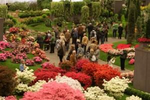 """Floraliën zet door corona de bloemetjes niet buiten: """"Organiseren wel Groene Zesdaagse"""""""