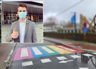"""Oppositie vraagt en krijgt regenboogzebrapaden: """"Een zeer krachtig signaal"""""""