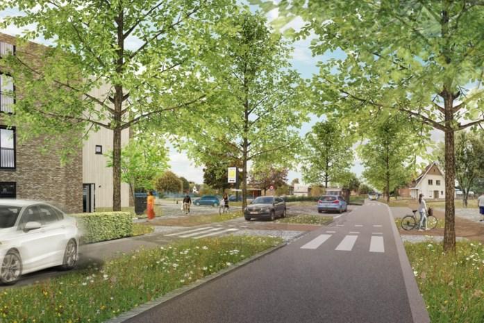 """Onteigeningsbesluit voor Lommelse rondweg vernietigd: """"Een tegenslag"""""""